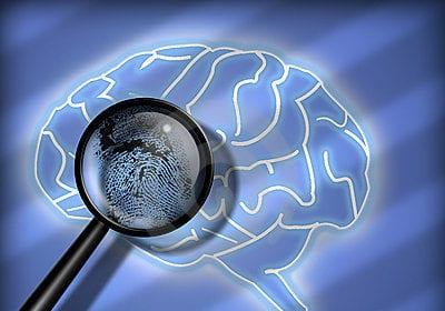 brain-fingerprinting