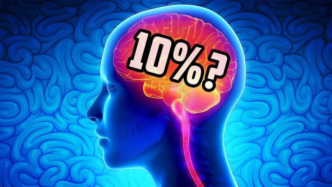 mozak, mitovi o mozgu, mitovi, deset posto mozga